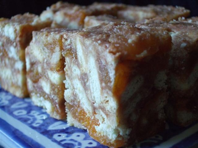 Gabrielle's Apricot Slice (photo © Kiwidutch)