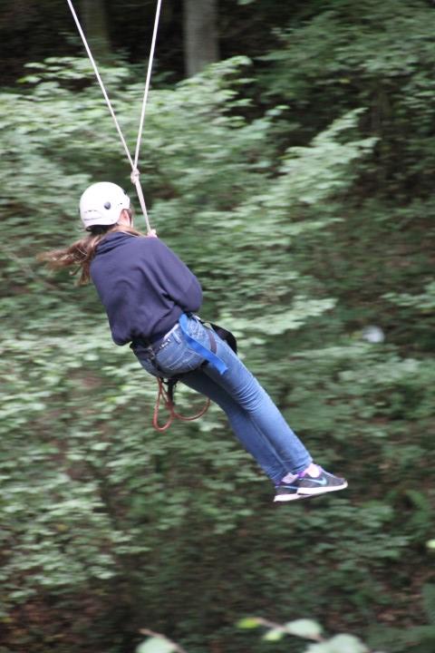 tree2 climb 6a (Small)